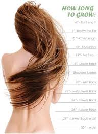 Bleach Hair Time Chart Hair Growth Calculator Tool From Hair Formula 37 Put In