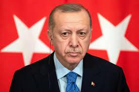 Erdogan mit dem Rücken zur Wand: Als Nächstes geht es den Frauenrechten an  den Kragen - Politik - Tagesspiegel