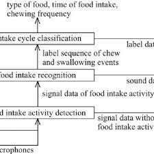 Flow Chart Of Food Intake Analysis Steps Download