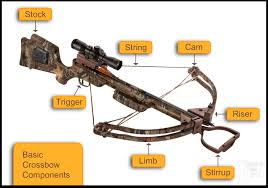 how crossbow works a beginners guide to crossbows have you ever shot one