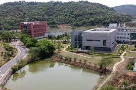 コロナ 研究 所