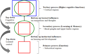 Frontiers The Influences Of Emotion On Learning And Memory