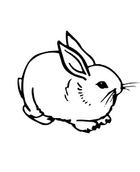 Small Picture bunny coloring pages 100 images bunny coloring pages in free
