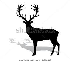 deer vector silhouette. silhouette deer with great antler/animal/ vector illustration a
