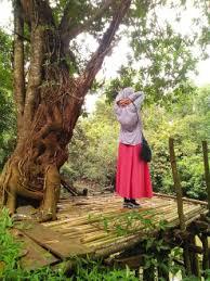 foto orang dari belakang dengan pemandangan | Wisata Jabodetabek ...