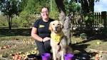 Howl-o-ween half term fun at Dogs Trust Evesham