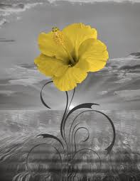 black white yellow wall art yellow flower bathroom bedroom modern wall picture