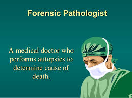 forensic pathologist forensic pathology