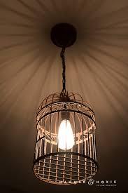 birdcage lighting. new bird cage pendant light 68 on clear glass mini lights with birdcage lighting r