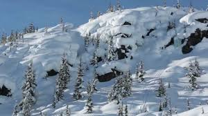 Image result for pillows in rogers pass