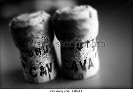 Resultado de imagen para corcho de cava