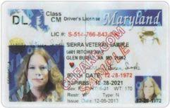 Identification Fake Id Maryland Scannable Buy