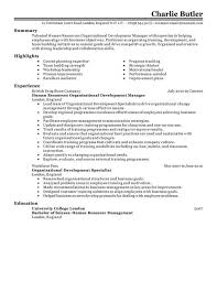 Human Resource Resume Objective Human Resources Resume Objective Examples Of Resumes Hr Statements 88