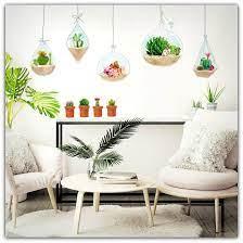 terrarium mini cactus theme