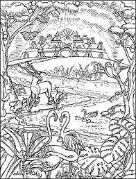 De Nieuwe Hemel En Aarde Gkv Apeldoorn Zuid