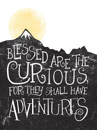 Curiosity Quotes Best Curiosity Quotes Sayings and Quotations Quotlr 50