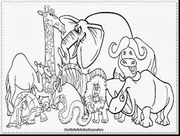 Small Picture Zoo Coloring Pages Kindergarten