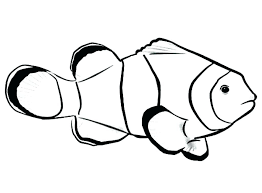 rainbow fish coloring page fish coloring pages printable divine clown fish coloring pages printable to tiny