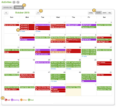 Activities Calendar View - Overview : Matrix Support