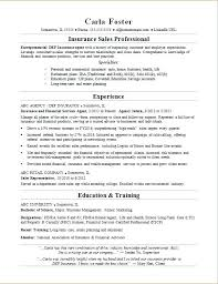 Sample Insurance Agent Resume Sales Position Resume Examples