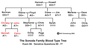 parent blood types chart biology exam 4 hints