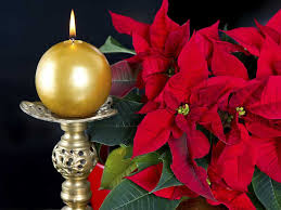 around christmastime many people do some general cleaning and decide to discard some items including christmas decor
