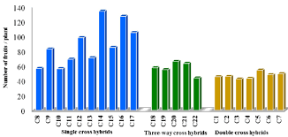 Bar Graph For Number Of Fruits Per Plant Of 22 Tomato
