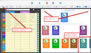 Family Tree Flow Chart Family Tree Builder For Mac Online Help Flow Chart In Numbers
