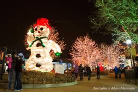 christmas tree lighting chicago. ZooLights Chicago Christmas Tree Lighting