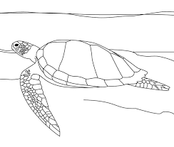 Small Picture 690 best coloring pages images on Pinterest Car drawings