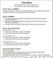 Award Winning Resume Templates Gorgeous COO Sample Resume Award Winning Executive Resume Writing Service