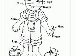 Small Picture Parts Of The Body Coloring Pages Corresponsablesco