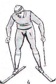 Реферат по физической культуре Общие требования при проведении  Конькобежный ход