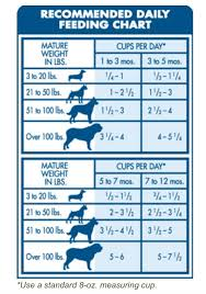 Dog Food Chart By Weight And Age Dog Feeding Guide By Age Weight A Day Of Increased Physical