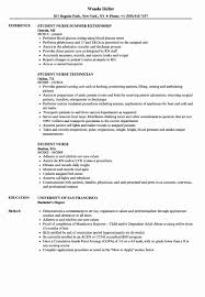 28 Affordable Sample Nursing Student Resume Example Design Template