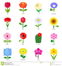 types of flowers in bouquets. common flowers in bouquets - stock vector image 56869180 types of