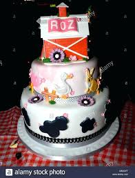 21st Birthday Cakes Funny Garajit