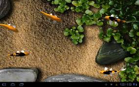 free download koi live wallpaper for android tablet. koi live wallpaper free download for android tablet