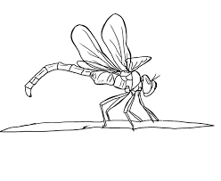 Small Picture FREE Dragonfly Coloring Page 19