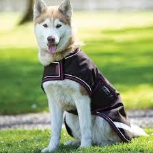 amigo waterproof dog rug