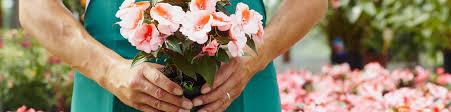Florist Shop Display Stands Fascinating Flower Shop Displays Stands Racks Signage