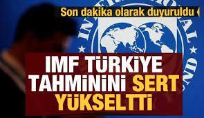 IMF'dan son dakika Türkiye açıklaması! Beklentileri revize etti - Ekonomi  Haberleri