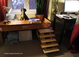 Best Desk Ever Inspiration Best Birthday Week Ever Crusoe The Celebrity  Dachshund Review