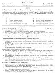 resume format for project manager sample executive resume format