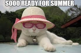 Bildresultat för summer funny pics