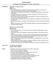 Field Sales Executive Resume Examples Example Cute With Sale Sample