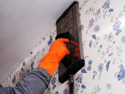 place steamer on surface of wall to penetrate glue another way to remove wallpaper