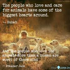 Love Animals Quotes Daily Motivational Quotes