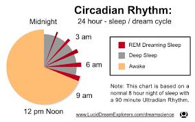 Sleep Dream Rem Circadian Rhythm Pie Chart Graph Sleep