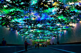 C Lighting Buckhead Ga Atlanta Airport A Locals Guide To Navigate Your Way